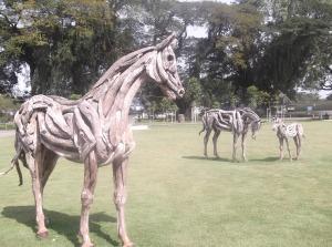 Wooden Horses