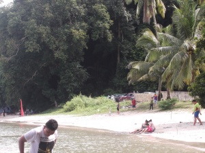 View from the left hand side of the cove that is Teluk Buih