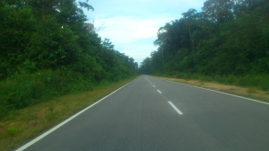 The road to Tanjung Resang. Drive carefully during late evenings and watch out for wildlife crossing the road. (@all rights reserved)