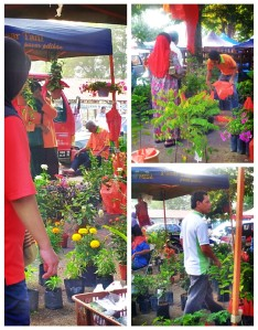 Potted plants and flowers on sale at Pasar Tani (@all rights reserved)