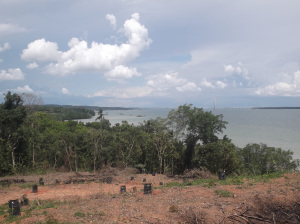 View from the fort of Johor Lama