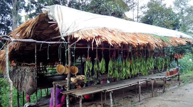 Off The Beaten Track – The Titiwangsa Range and Lata Iskandar