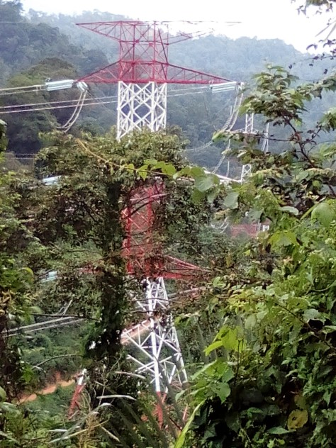 Power Grids of Titiwangsa